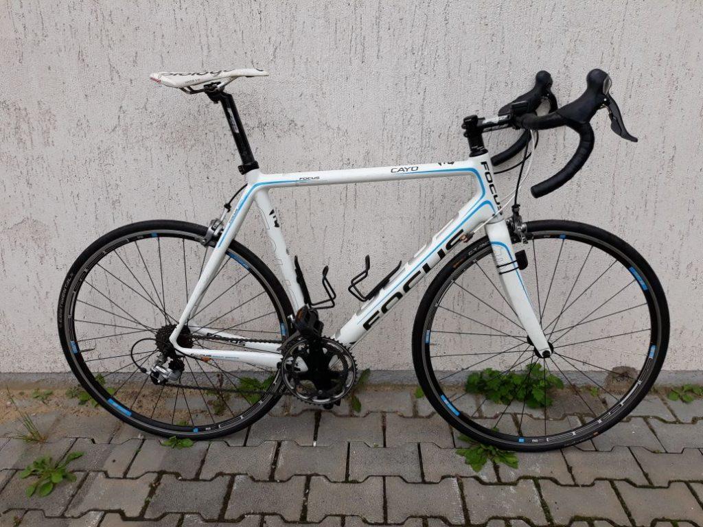 Focus Cayo Rennrad weiß blau