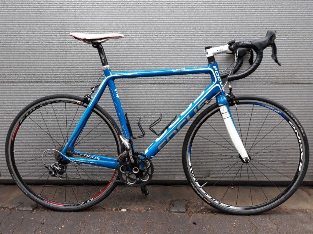 Focus Cayo Rennrad blau weiß